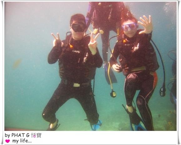 diving 10.JPG