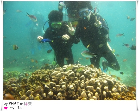 diving 12.JPG