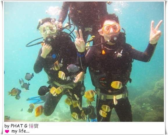diving 13.JPG