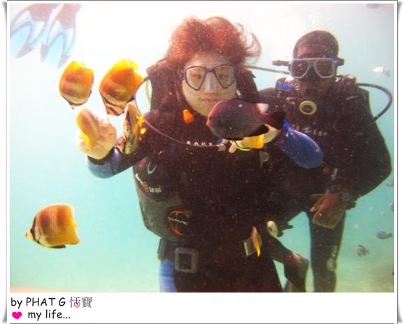 diving 14.JPG