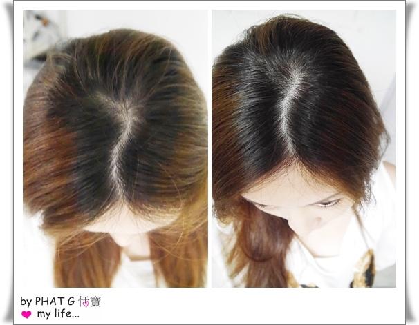 a 01 comb.jpg