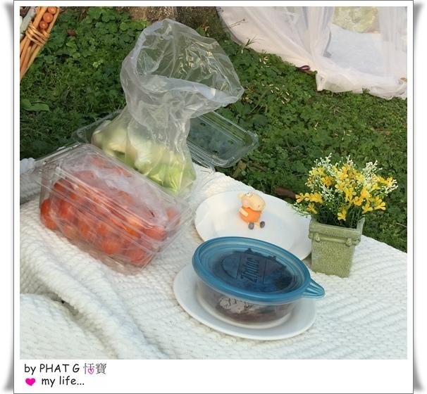 picnic 20.JPG