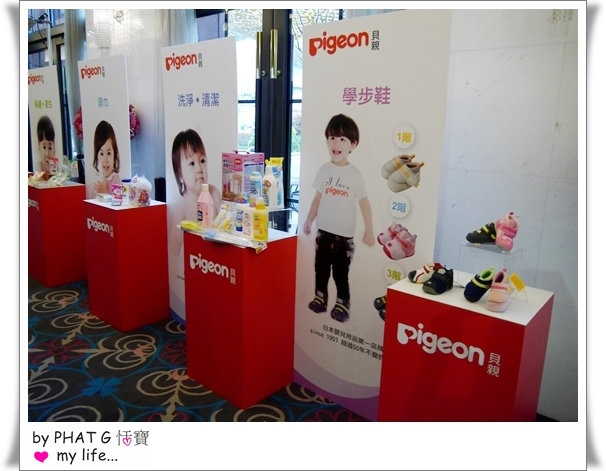 pigeon 09.JPG