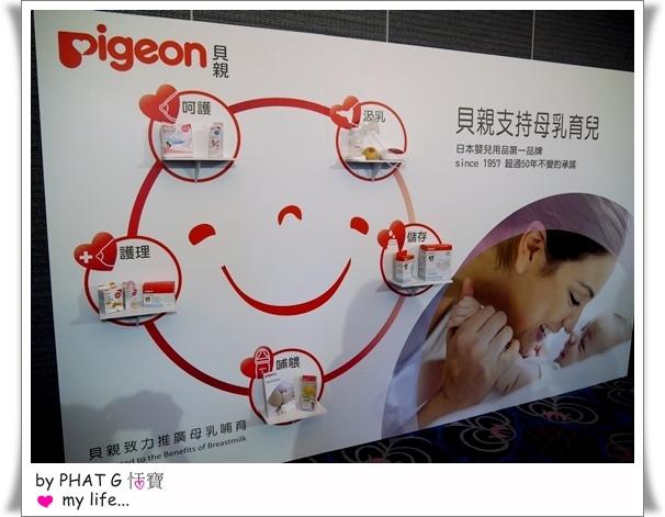 pigeon 13.JPG