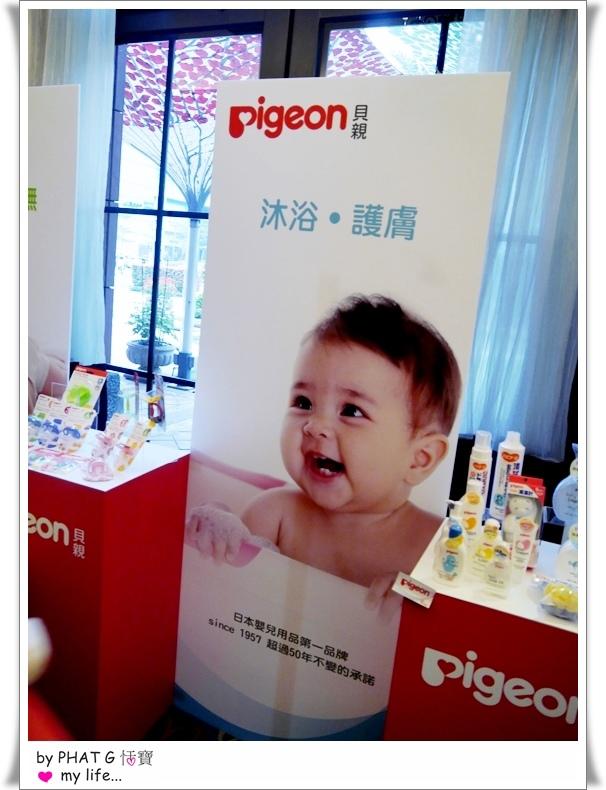 pigeon 14.JPG