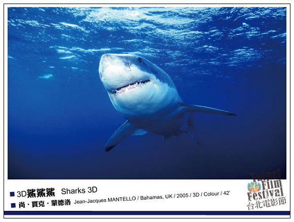 nEO_IMG_162_3D鯊鯊鯊--Sharks-3D.jpg