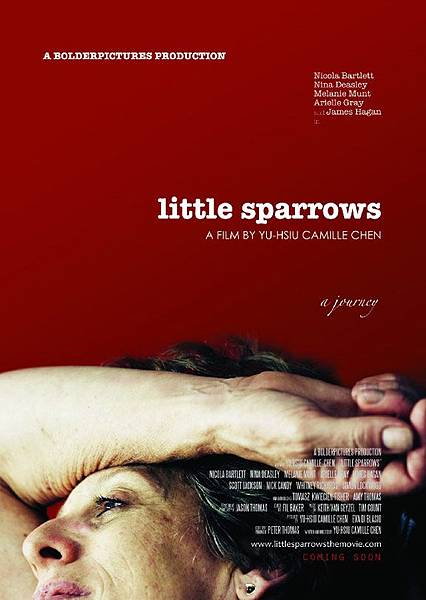 《小麻雀的天空》Little Sparrows