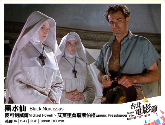 076黑水仙 Black Narcissus.jpg