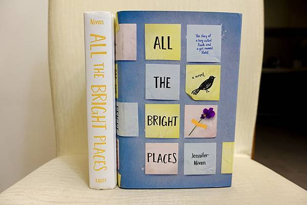 All the Bright Places 2.jpg