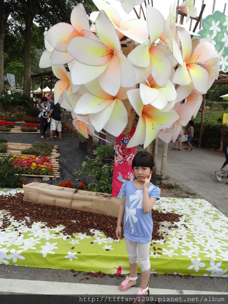 PICT_20140412_165151.JPG