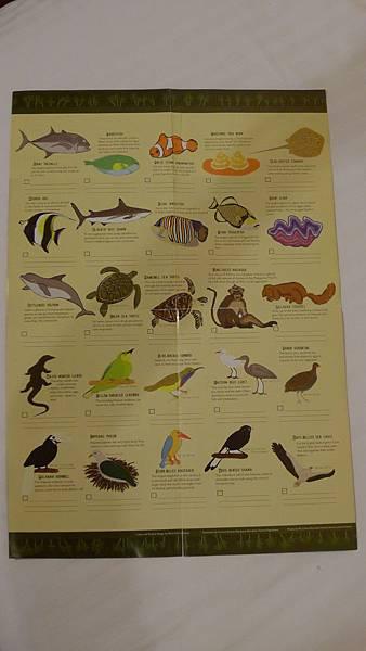 愛妮島生物表