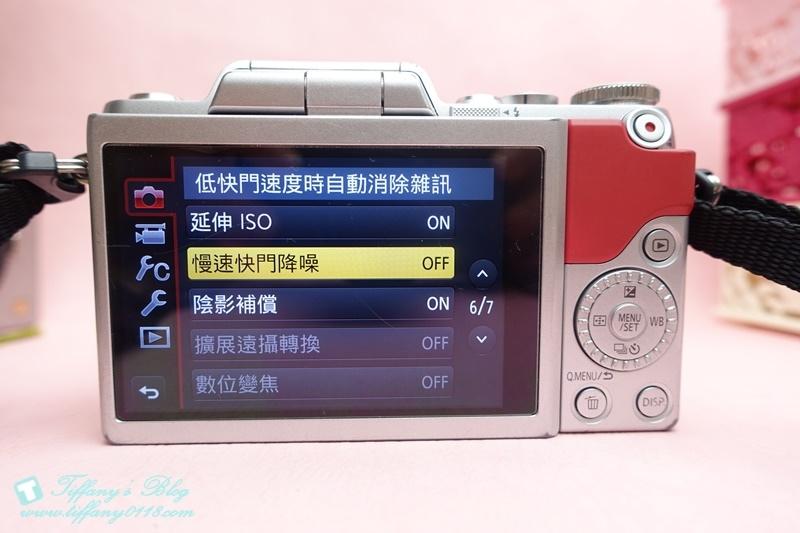 DSC00003 (4)