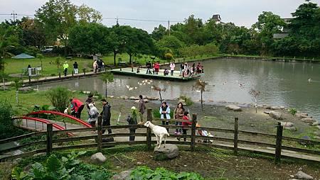 2014.12.14。(3歲3個月又5天)(1歲5個月又22天)。宜蘭冬山宜農牧羊場-22