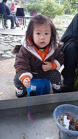 2014.12.14。(3歲3個月又5天)(1歲5個月又22天)。宜蘭冬山宜農牧羊場-36