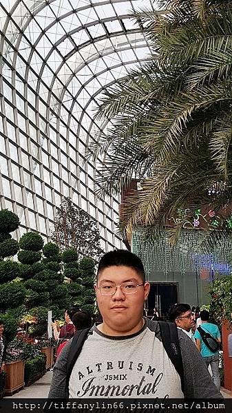 nEO_IMG_20171008 新加坡Day1_171013_0241.jpg