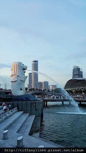 nEO_IMG_20171009 新加坡Day2_171013_0165.jpg