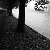 如詩境般河岸
