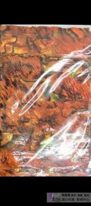 日本天然貝殼貼紙T26-04.jpg
