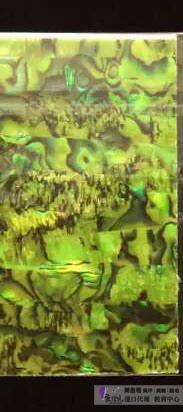 日本天然貝殼貼紙T26-03.jpg