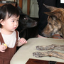 狗狗你也想吃?
