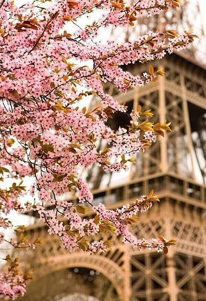 Primavera en París