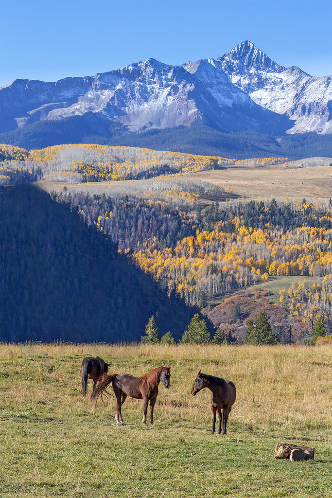 Colorado Ranch Autumn.jpg