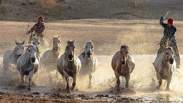 外蒙古5_5859-1_1