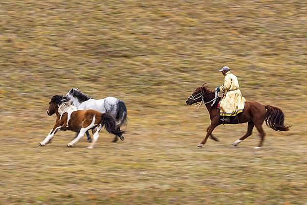 內蒙古_1468 - 複製