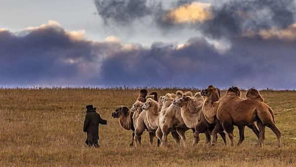內蒙古3_9346 - 複製