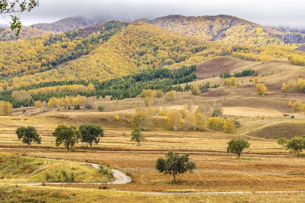 內蒙古3_7809_2.jpg