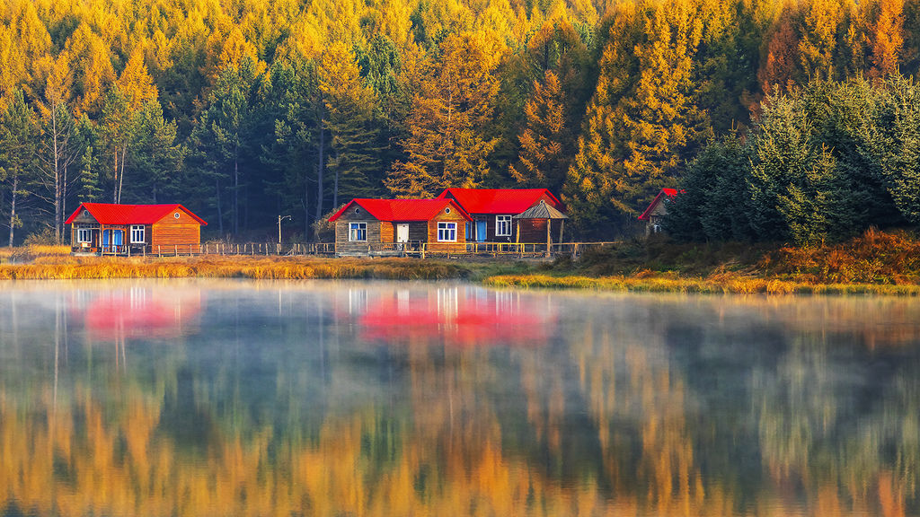 Morning light and autumn.jpg