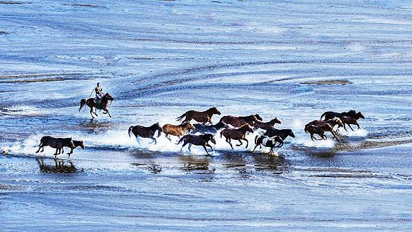 Galloping horse on the colorful river.jpg