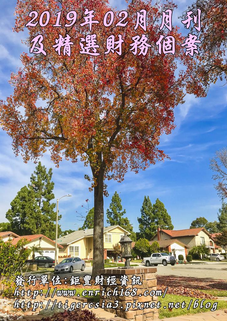 2019年02月月刊及精選財務個案-封面.png