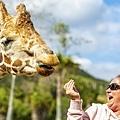 201903241San Diego Zoo_0529-1.jpg