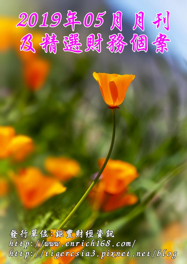 2019年05月月刊及精選財務個案-封面-2.png