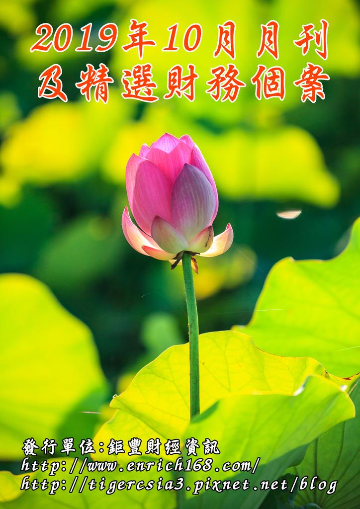 2019年10月月刊及精選財務個案-封面.png