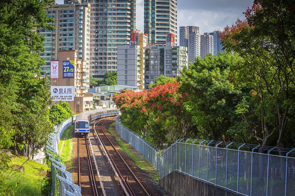 20191014捷運及台灣欒樹_9520-2.jpg