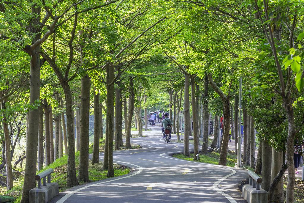 20200416神岡譚雅自行車道_3759-2.jpg