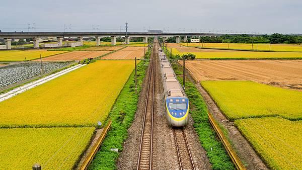 20200609白河阿勃勒與官田火車稻田_6711-1.jpg
