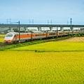 20200609白河阿勃勒與官田火車稻田_7409-1.jpg