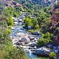 202010220038720190810加州國家公園1_3077-全景-1.jpg
