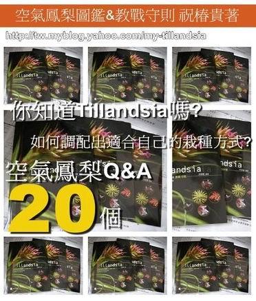 ap_F23_20110103094012642[1].jpg
