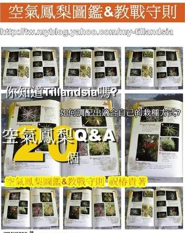 ap_F23_20110103094401872[1].jpg