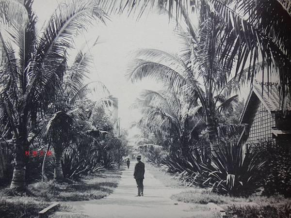 大正4年阿猴糖廠員工宿舍通工廠道路