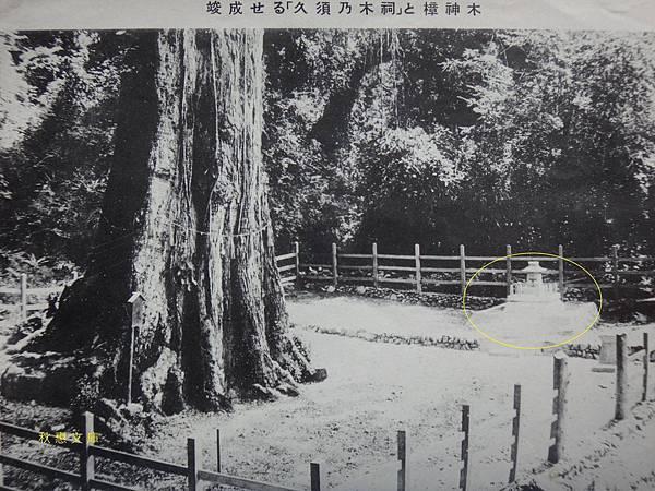 日本時代久須乃木(樟樹)祠及位置圖1