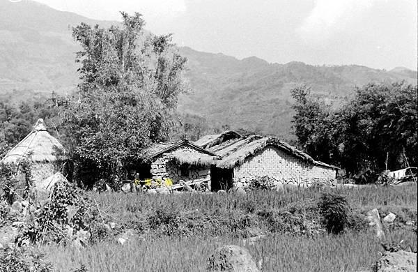 1950年代台灣鄉間土角厝