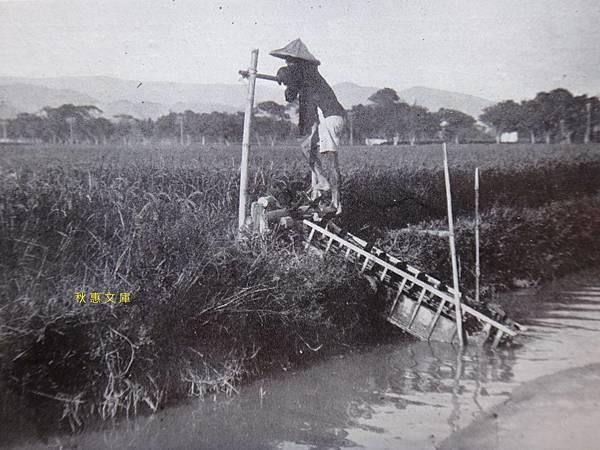 早期台灣農田常見的引水灌溉龍骨車.
