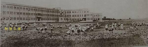 昭和12年(1937)剛搬至朱厝崙,正在整理校園的台北州立第三高等女學校學生(現中山女高)