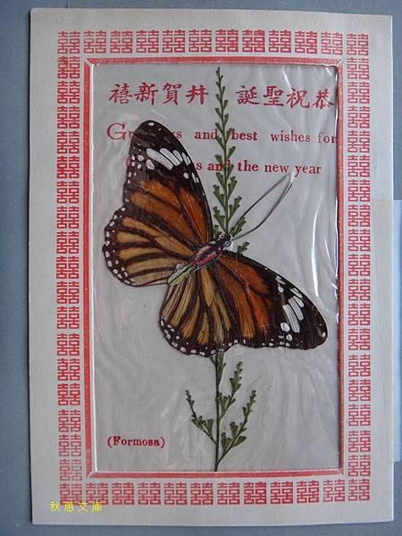 早期台灣有蝴蝶標本的聖誕卡