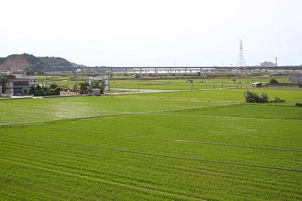 談文車站 (13).JPG